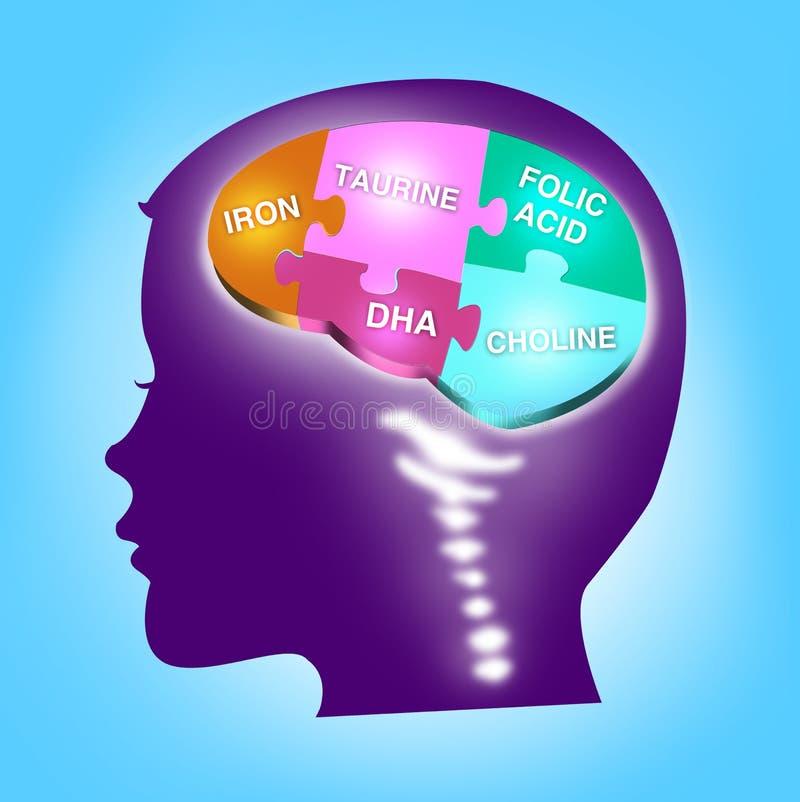 Concepto del desarrollo del cerebro del niño Minerales esenciales ilustración del vector