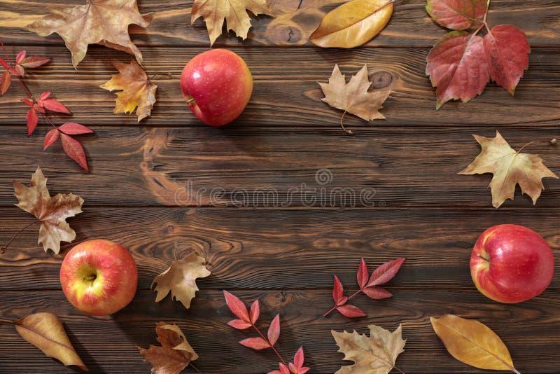 Concepto del fondo del otoño - hojas recientemente caidas y manzanas rojas en un fondo de madera con el espacio de la copia fotografía de archivo