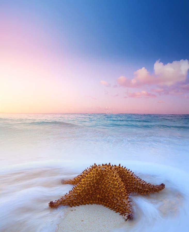 Concepto del fondo del verano del arte; sueño de las vacaciones de verano fotografía de archivo libre de regalías