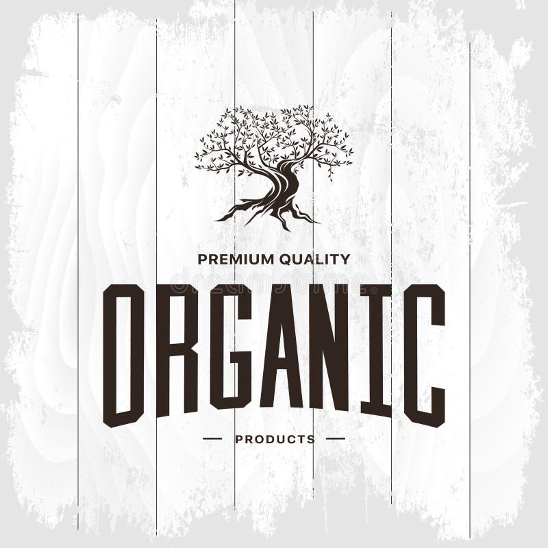 Concepto del logotipo del vintage del olivo aislado libre illustration