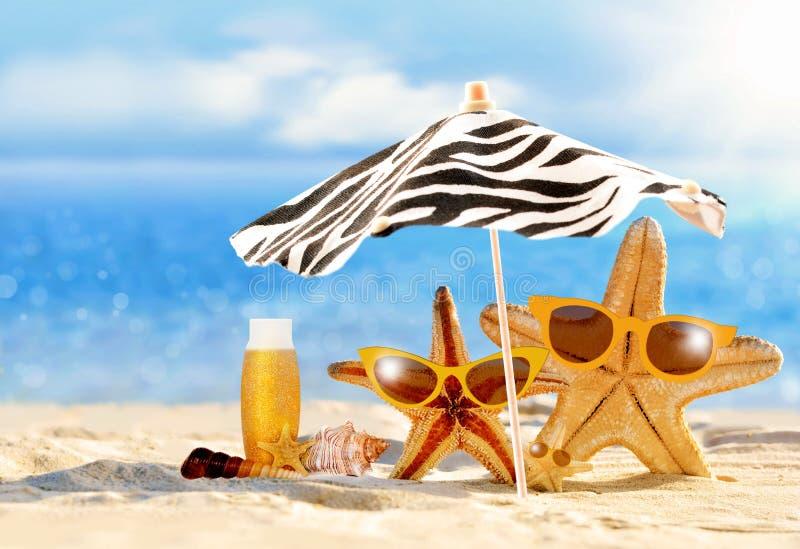 Concepto del verano con las estrellas de mar divertidas imagenes de archivo