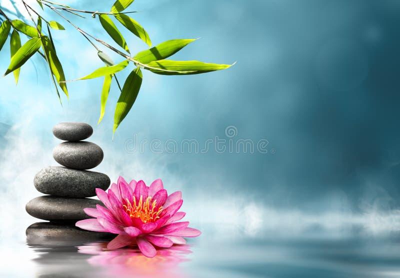 Concepto del zen en naturaleza imágenes de archivo libres de regalías