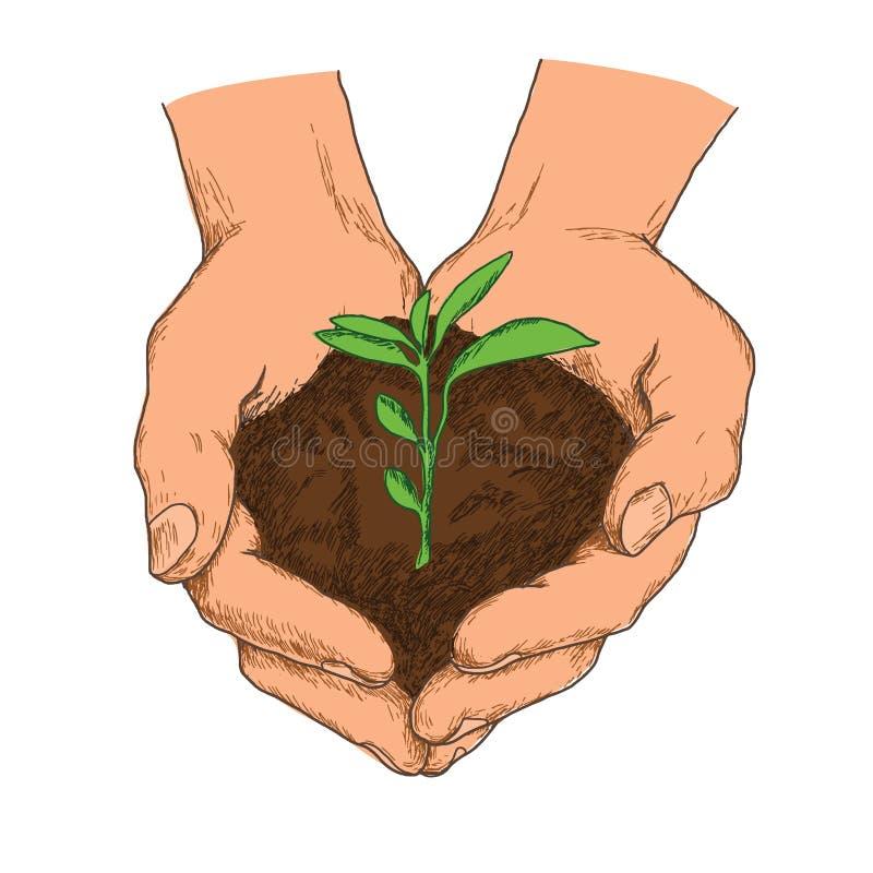 Concepto dibujado mano de la ecología de crecimiento de la planta imagenes de archivo
