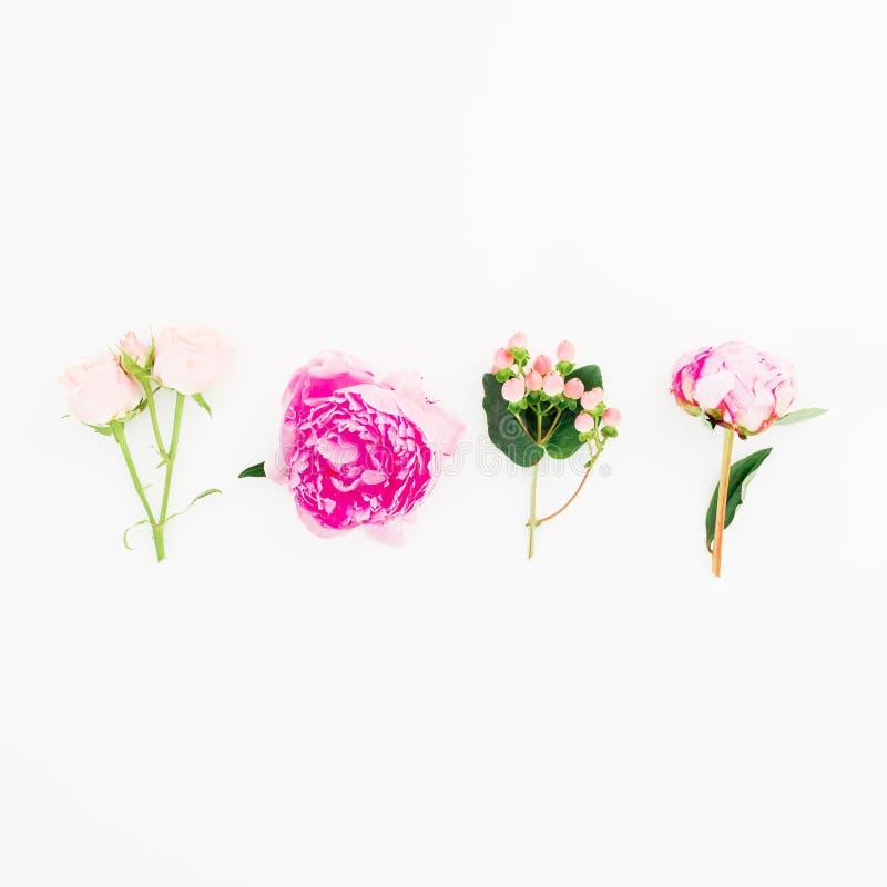 Concepto floral hecho de las flores rosadas de la peonía y de las rosas en el fondo blanco Endecha plana, visión superior stock de ilustración