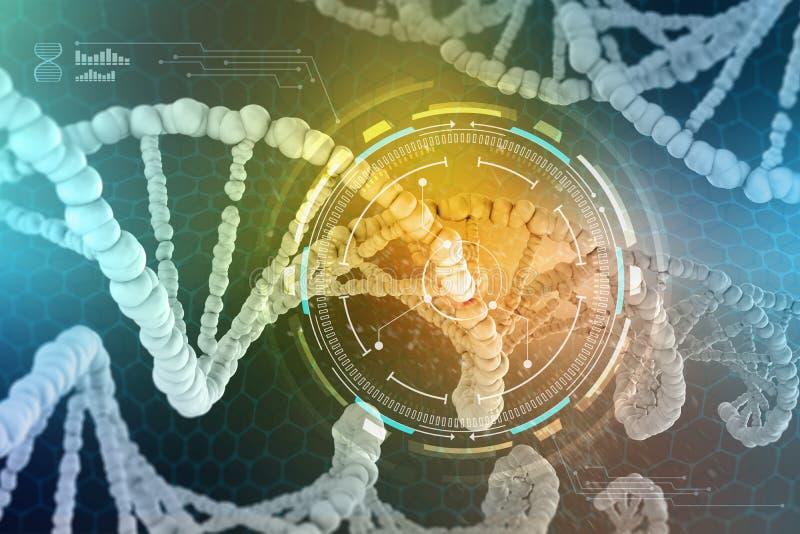 Concepto genético de la DNA aislado en el fondo blanco El estudio de la estructura de la DNA y del ARN, la introducción de cambio stock de ilustración