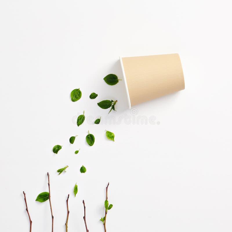 Concepto herbario orgánico creativo de la bebida de Eco con las hojas verdes imagenes de archivo