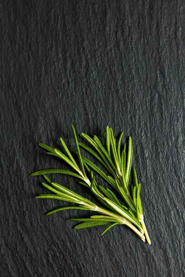 Concepto herbario Rosemary orgánica de la comida en tablero negro de la piedra de la pizarra imagen de archivo libre de regalías