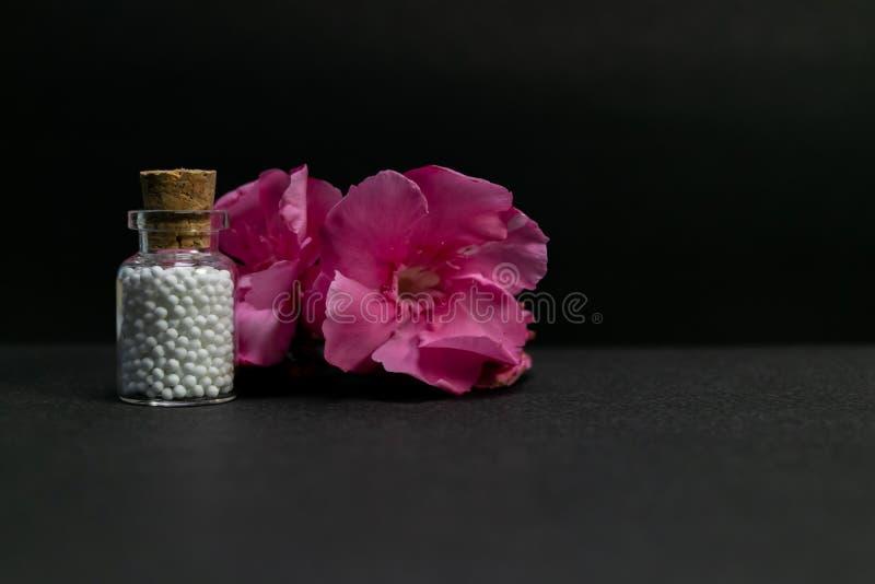Concepto homeopático natural - botella de la medicina homeopática de píldoras con los brotes de flor rosados en fondo oscuro fotos de archivo libres de regalías
