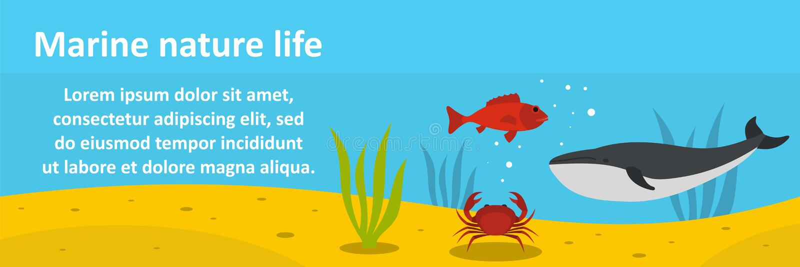 Concepto horizontal de la naturaleza de la bandera marina de la vida stock de ilustración