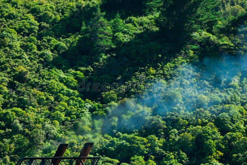 Concepto, humo y bosque de la contaminación del gas del clima imágenes de archivo libres de regalías