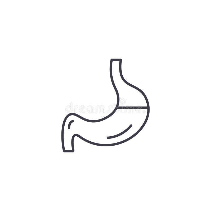 Concepto linear del icono del estómago Soporte la línea muestra del vector, símbolo, ejemplo ilustración del vector