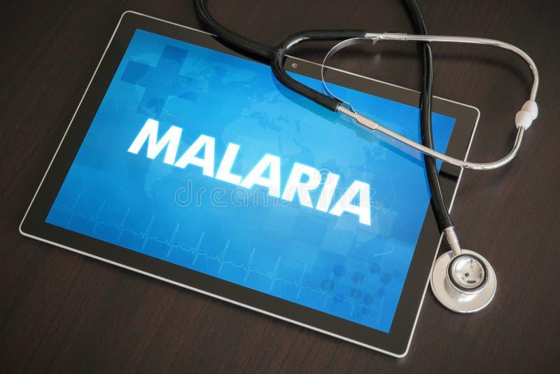 Concepto médico de la diagnosis de la malaria (enfermedad infecciosa) en la tableta imagenes de archivo