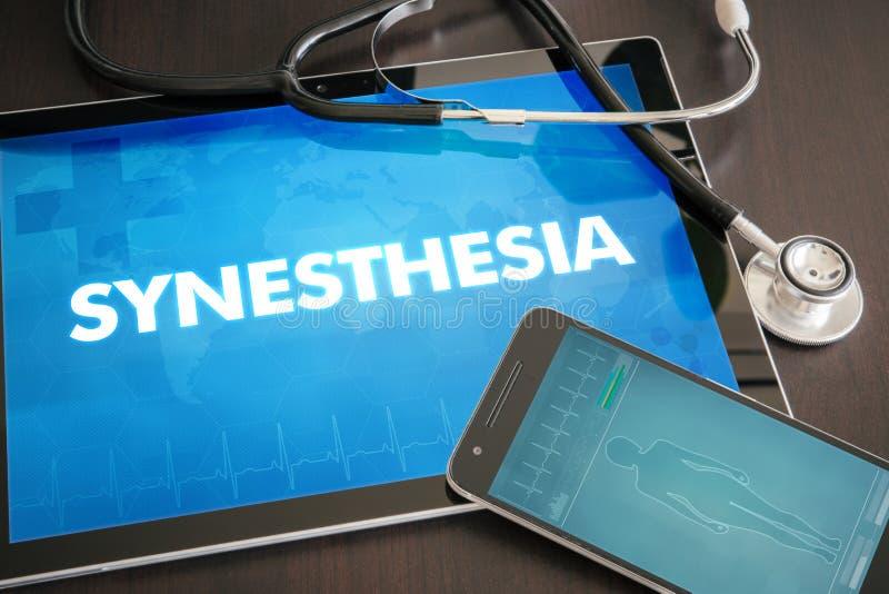 Concepto médico de la diagnosis del Synesthesia (desorden neurológico) encendido fotos de archivo libres de regalías