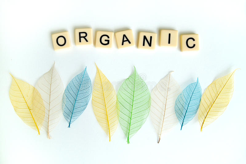 Concepto orgánico con las hojas secadas fotos de archivo libres de regalías