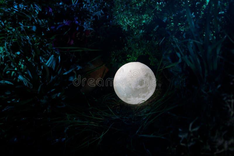 Concepto surrealista de la fantasía - Luna Llena que miente en hierba Foto adornada Fondos de hadas abstractos fotos de archivo libres de regalías