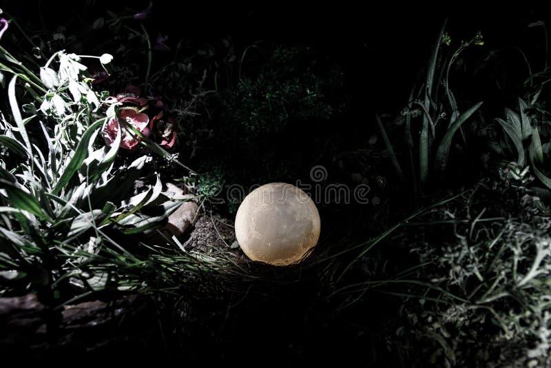Concepto surrealista de la fantasía - Luna Llena que miente en hierba Foto adornada Fondos de hadas abstractos imagen de archivo libre de regalías