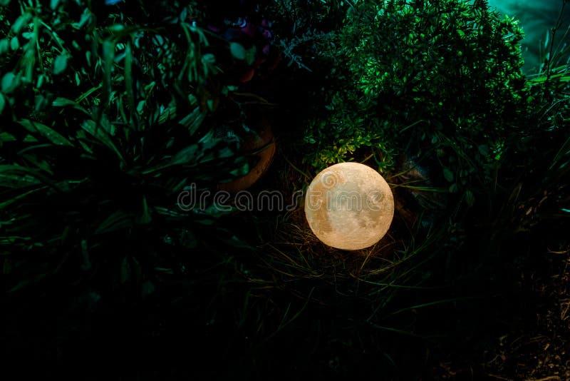 Concepto surrealista de la fantasía - Luna Llena que miente en hierba Foto adornada Fondos de hadas abstractos imágenes de archivo libres de regalías