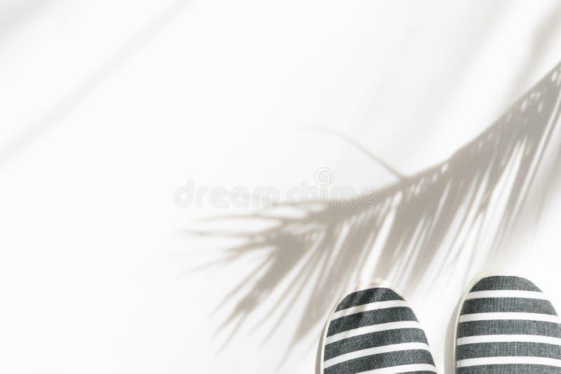 Concepto tropical de la moda del verano La lona femenina de la ropa de playa de las mujeres rayó los zapatos en el fondo blanco c foto de archivo libre de regalías
