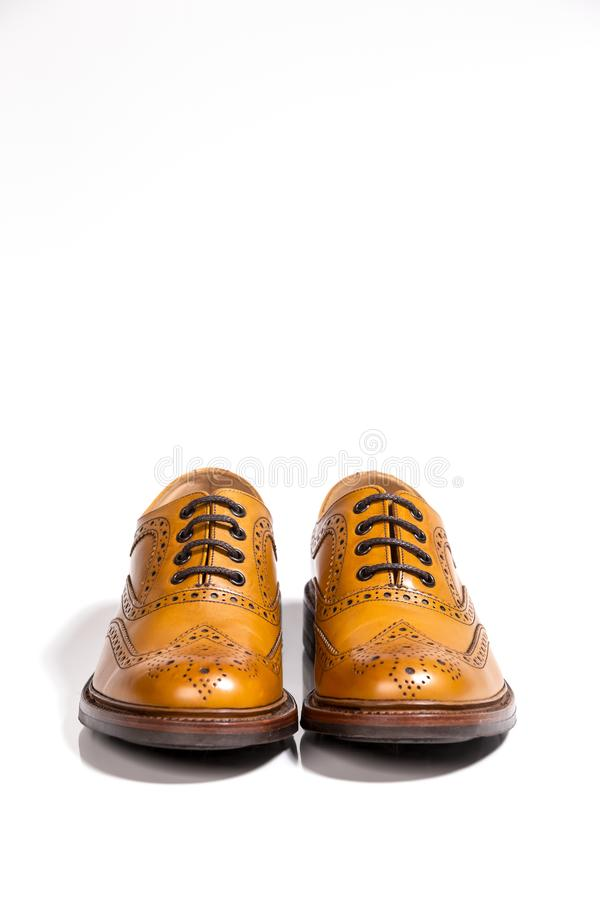 Concepts of Luxury Male Footwear. Full Broggued Tan Leather Oxfoквы. Concepts of Luxury Male Footwear. Full Broggued Tan Leather Oxfords Shoes Isolated royalty free stock image
