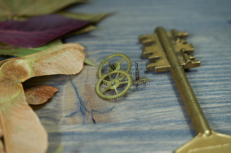 Close-up of a golden key and small cogwheel gears royalty free stock image