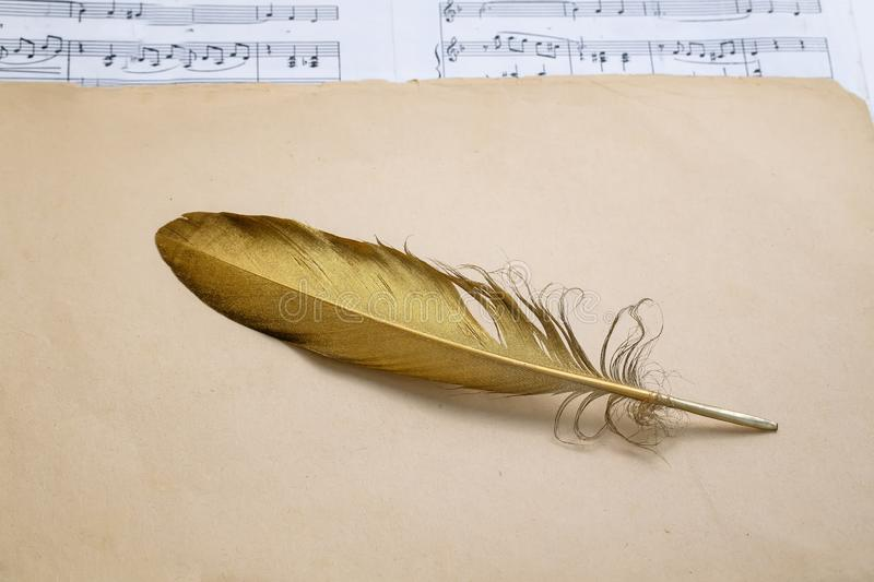 Composition of the symbol of a golden bird feather lying on an old background th yellowed and with the melody of music stock photo