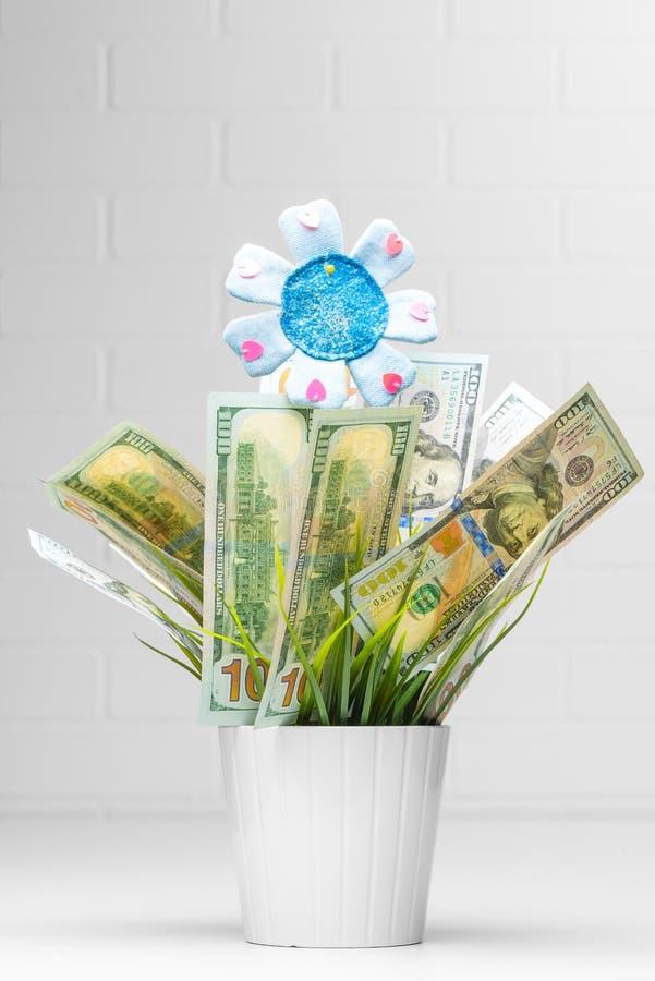 Conceptual financiero Image Dinero que crece en flor fotografía de archivo