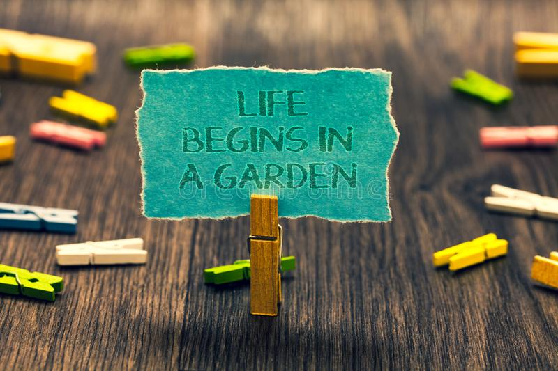 Conceptual hand writing showing Life Begins In A Garden. Business photo showcasing Agriculture Plants growing loving for. Gardening Paperclip retain blue royalty free stock photos