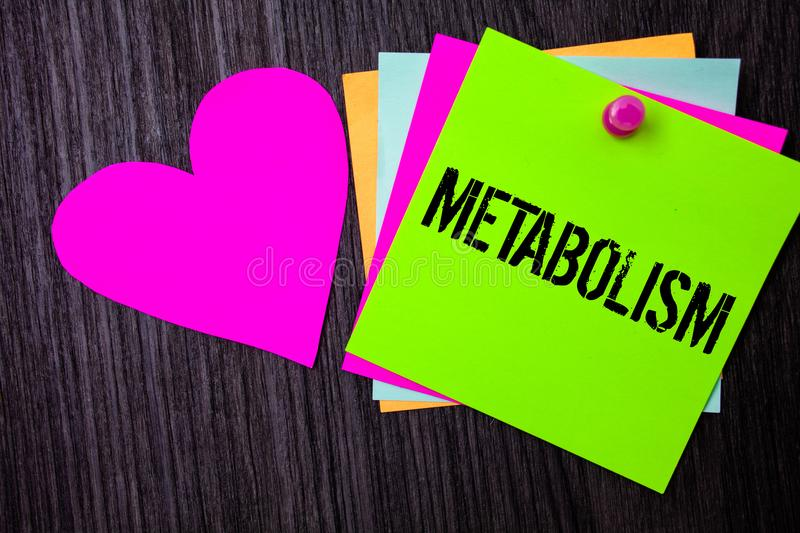 Conceptual hand writing showing Metabolism. Business photo text Chemical processes in body to produce energy food processing Pinne. D multi colour cards heart stock photography