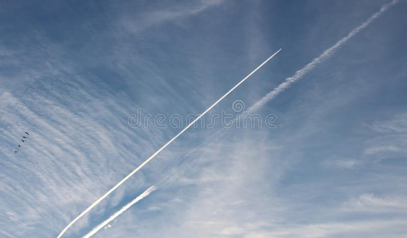 Conceptual image of bright blue skies with jet streams and flock of birds migrating South for the Winter. Conceptual image full of promise with bright blue skies stock images