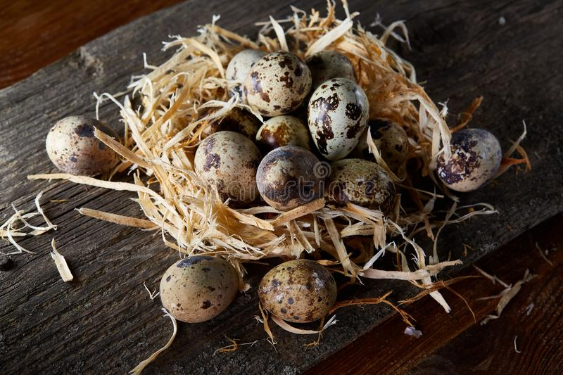 Conceptual still-life with quail eggs in hay nest over dark wooden background, close up, selective focus royalty free stock photos