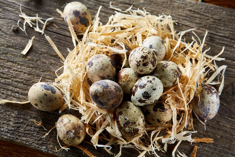 Conceptual still-life with quail eggs in hay nest over rustic wooden background, close up, selective focus stock photos
