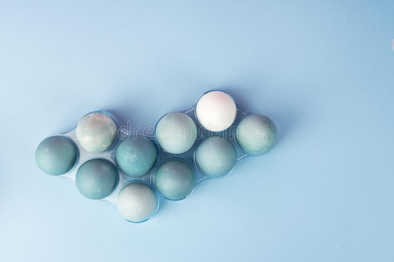 Conceptual still life photo of several blue eggs in plastic geom royalty free stock photography