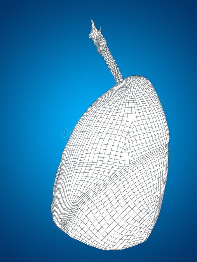 Conceptueel menselijk het netwerk ademhalingssysteem van mensen 3D wireframe stock illustratie