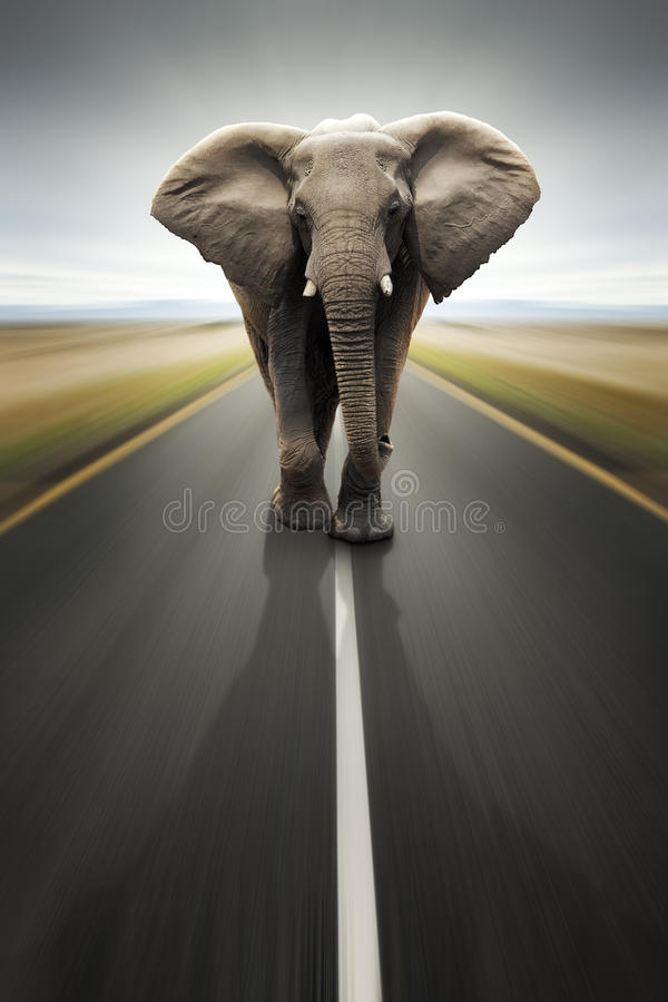 Conceptuel - transport/course lourds par la route photographie stock