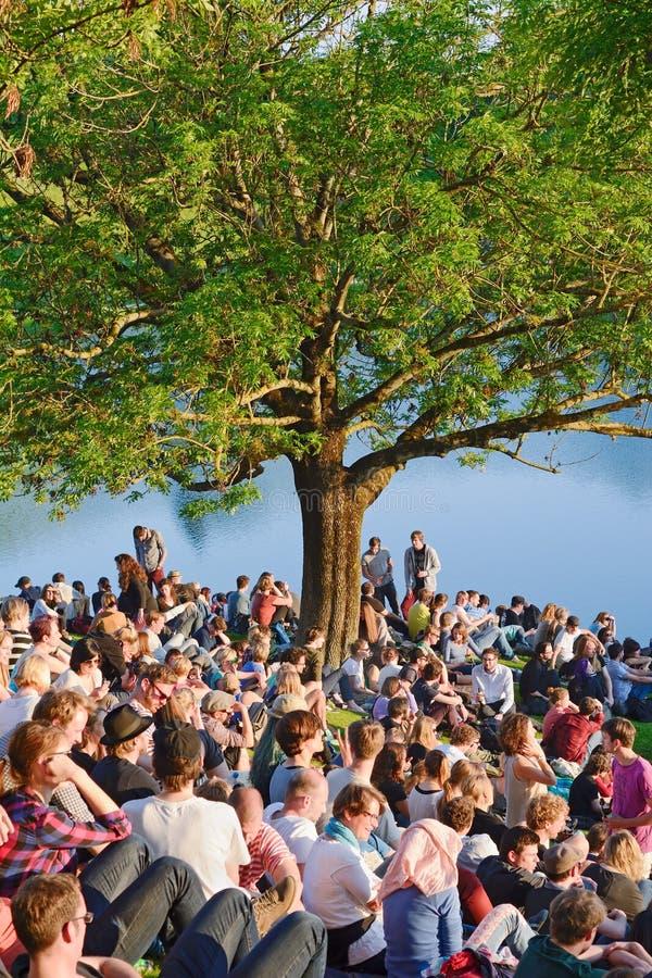 Concert en parc images stock