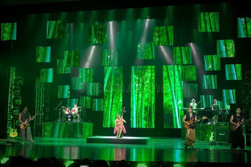 Concerto di musica popolare di stile cinese immagini stock