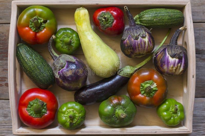 Concetto: alimento vegetariano, alimento naturale agricoltura, sana, ingrediente, prodotti di autunno Vista superiore fotografia stock