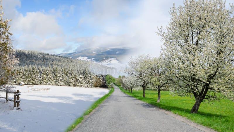 Concetto cambiante di stagione di estate e di inverno con la strada immagini stock