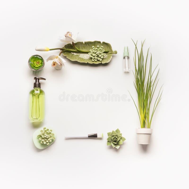 Concetto cosmetico di erbe La pagina dei prodotti, degli accessori, delle piante e dell'orchidea cosmetici verdi fiorisce sul des immagine stock
