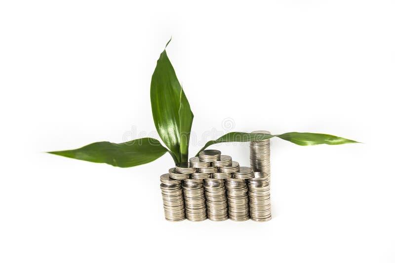Concetto crescente dei soldi: casa dei soldi dalle monete fotografie stock