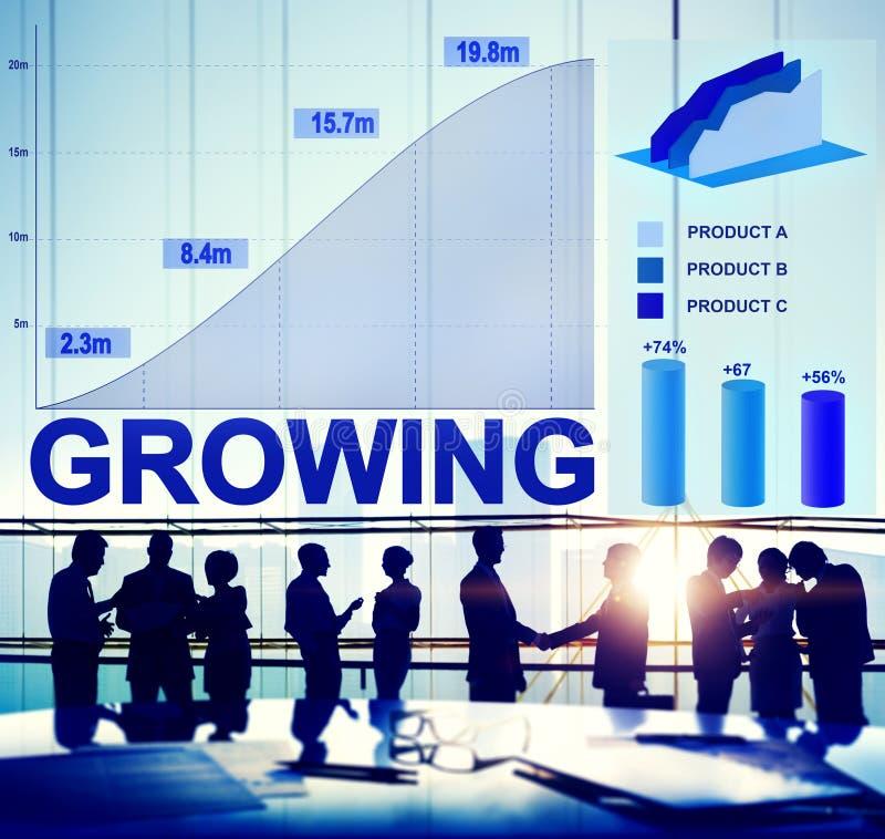 Concetto crescente dell'obiettivo di obiettivo aziendale di successo di crescita immagini stock libere da diritti