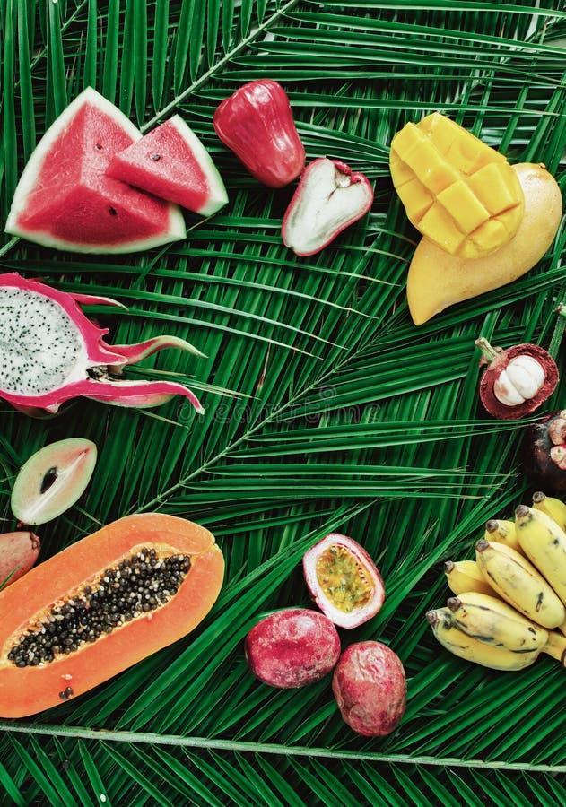 Concetto crudo della natura di dieta di cibo di frutti tropicali immagine stock libera da diritti