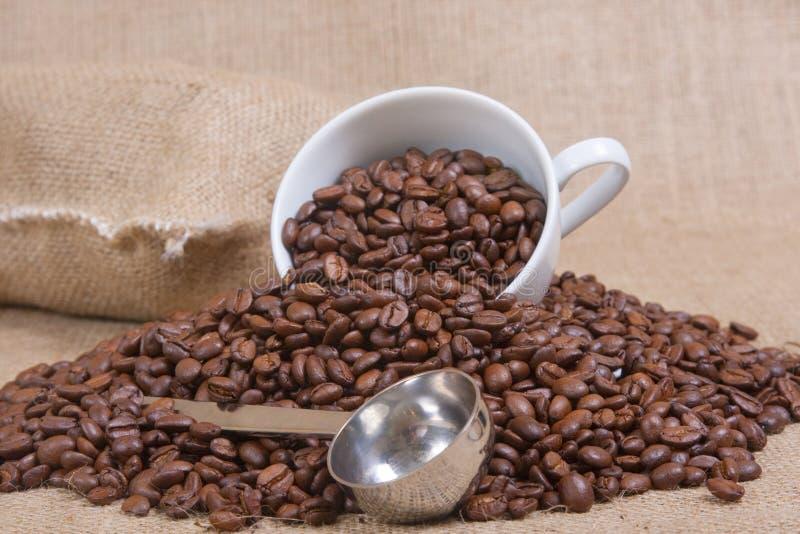 Concetto del caffè fotografia stock