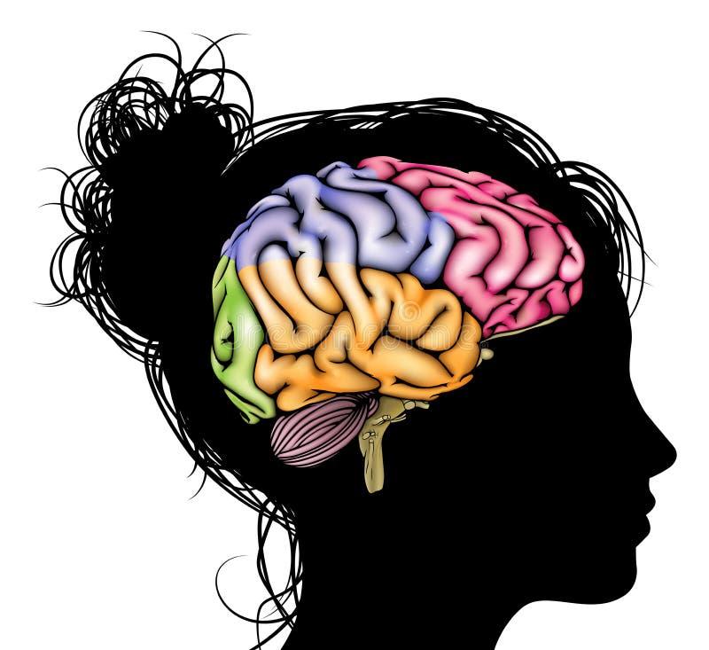 Concetto del cervello della donna illustrazione di stock