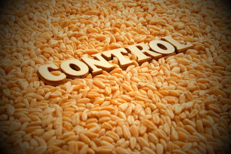Concetto del raccolto di grano di controllo Lettere di legno su grano Vignettatura, tonificante Copi lo spazio Regolamento intern fotografia stock libera da diritti