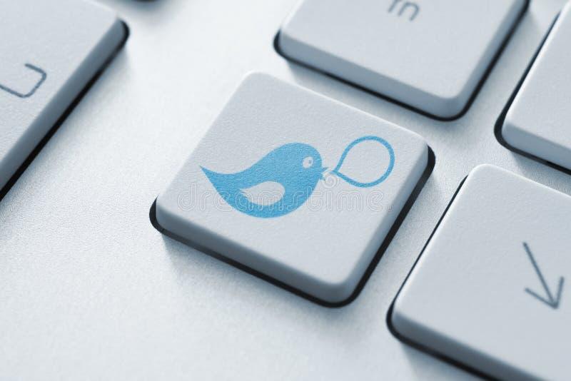 Concetto del tasto del Twitter fotografie stock libere da diritti