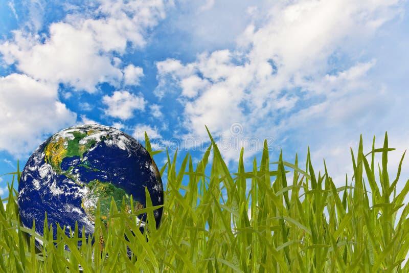 Concetto dell'ambiente, globo nell'erba fotografia stock libera da diritti