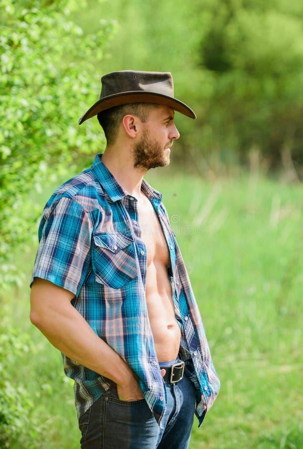 Concetto dell'azienda agricola Cowboy barbuto del tipo in natura I sei pacchetti macho del torso portano i vestiti ed il cappello immagine stock