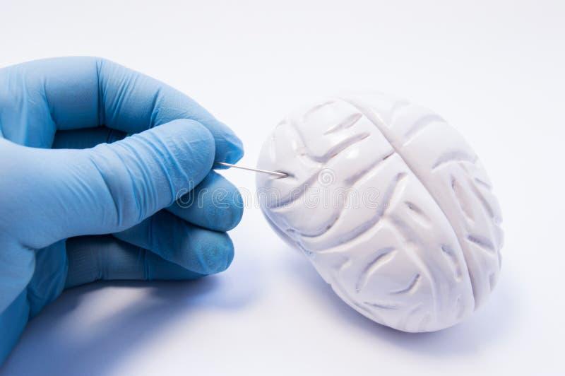 Concetto della biopsia del tessuto cerebrale L'ago di puntura della tenuta del chirurgo e sta preparando perforare del cervello p fotografia stock