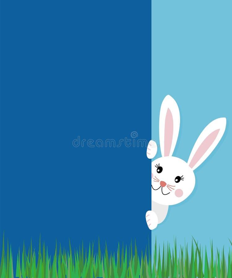 Concetto della cartolina d'auguri di Pasqua con il coniglio di coniglietto sveglio del testo che guarda dietro la parete blu sul  illustrazione di stock